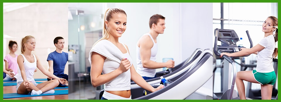 Fitness Fitness Fitness Fitness