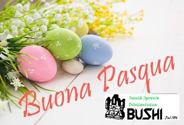 Società sportiva dilettantistica bushi added a new photo. 17861928 1368522679870529 7262251745381780130 n
