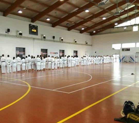 Karate, stage Fesik 16 settembre 2017. Otello Alessio, Domenico capitoli,  Maura… 21462796 1526665317389597 4612048251504433114 n 540x480