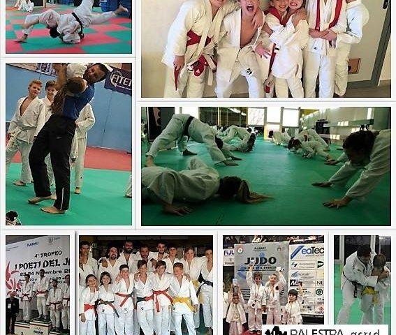 Vieni a provare il Judo e scopri perchè è una delle discipline più praticate al … 22196391 1543214082401387 8795284286821486063 n 567x480